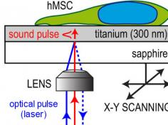 Schematic of the iPOM microscope