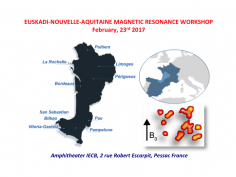 Euskadi-Nouvelle Aquitaine Magnetic Resonace Workshop