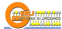 www.gerli.com